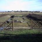 Un ponte romano sulla Via Annia. Una seconda vita?