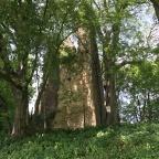 La Torre di Rai di San Polo di Piave